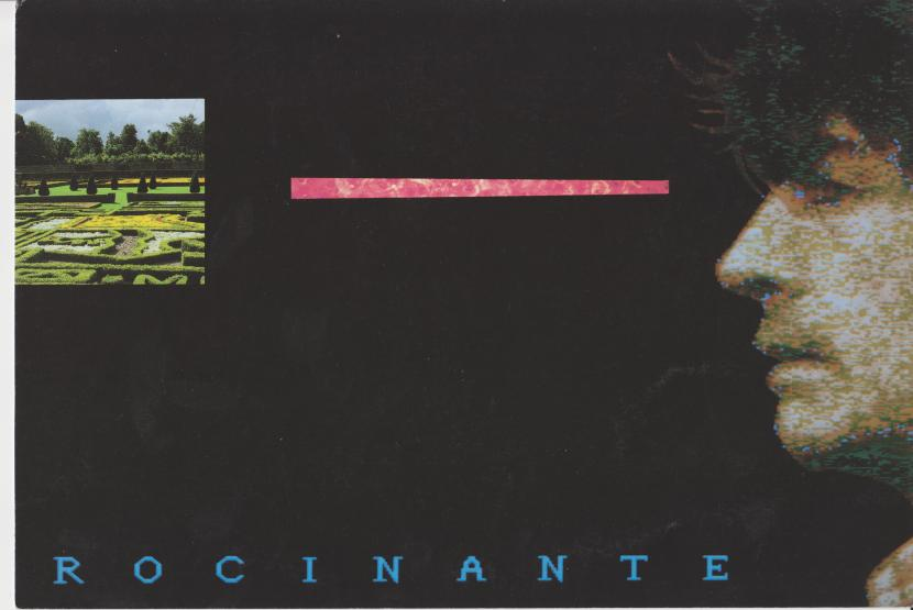 Rocinante1